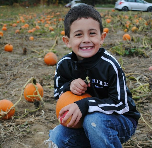 Boy in pumpkin patch holding pumpkin