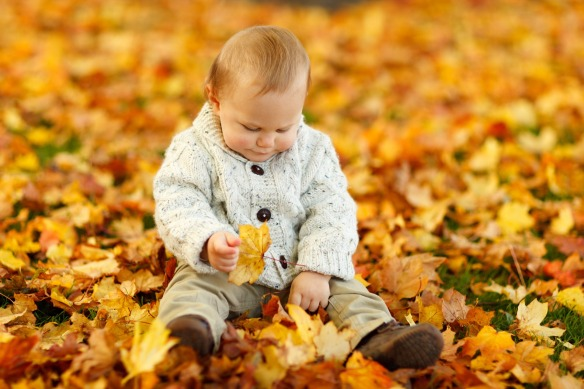 Little boy playing in leaves