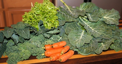 Fresh greens and carrots