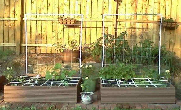 Example of square foot garden