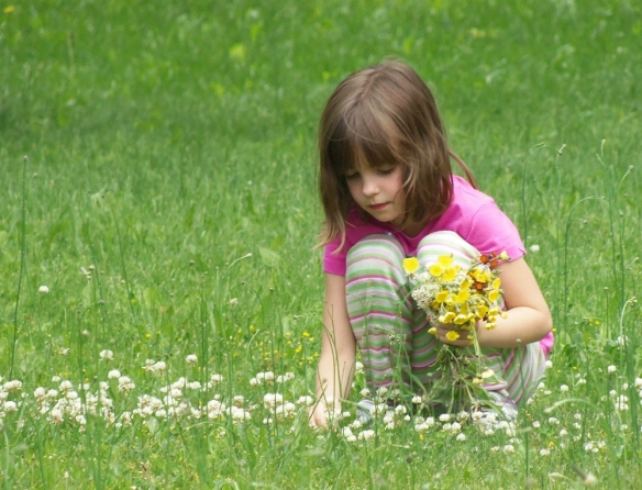 Young girl picking flowers in a field