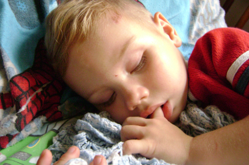 Sleeping preschooler sucking his thumb