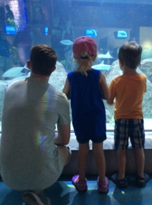 A man, little girl and little boy standing close to aquarium tank